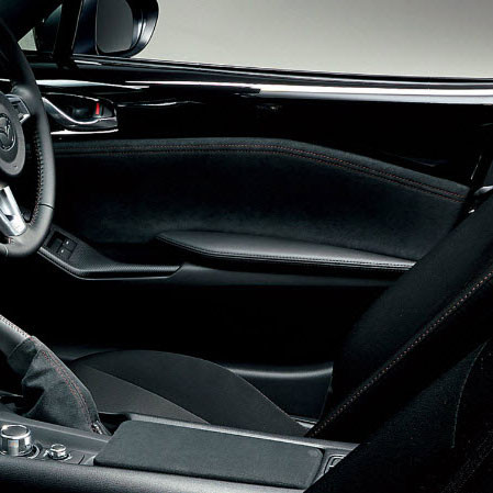 Mazdaspeed Suede Door Trims