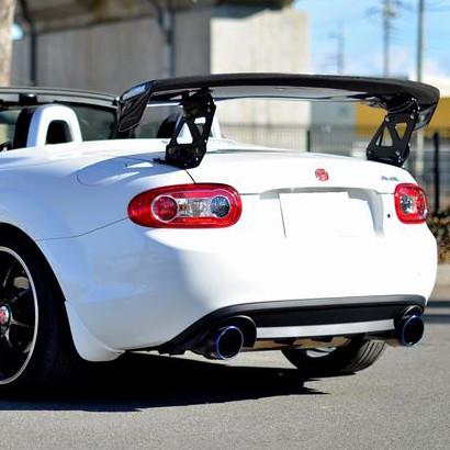 Odula Carbon Fiber GT Wing