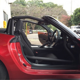Saito ND 4-Point Roll Cage
