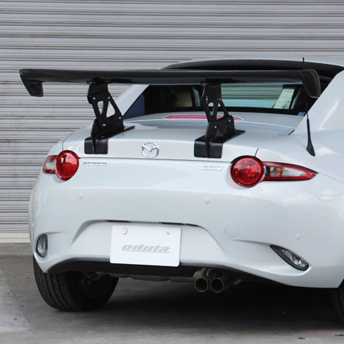 Odula RF GT Wing
