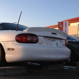Autoexe Ducktail Spoiler